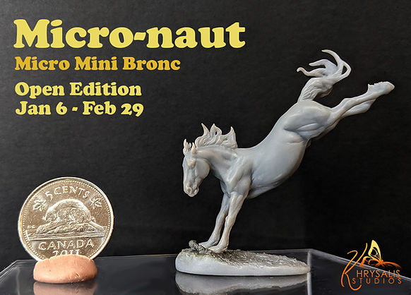 Micornaut-Smltxt.jpg