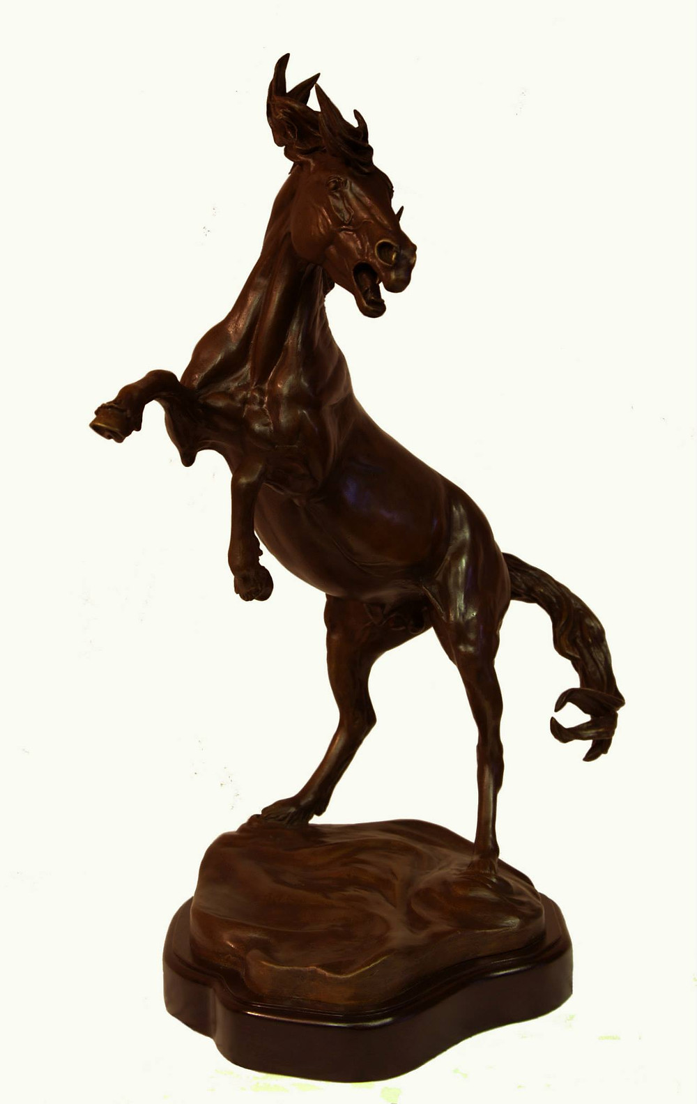 Guardian Bronze