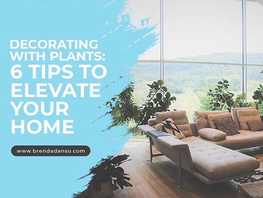 Decorating With Plants: 6 Tips to Elevate Your Home