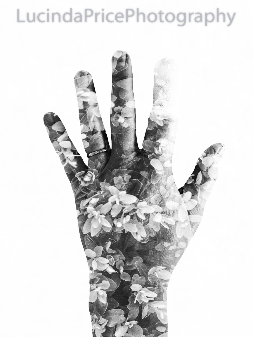 Image of a hand overlaid with leaf effect (black & white)