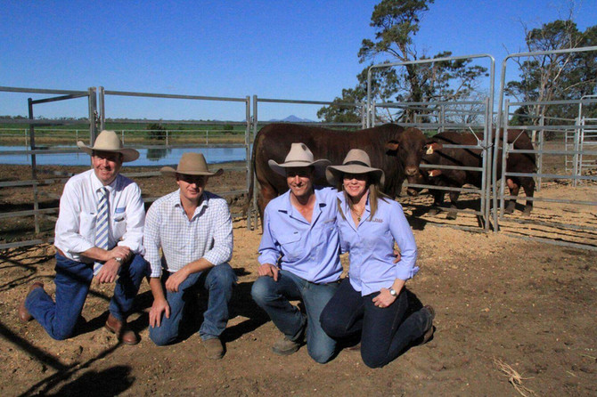 2016 Tookey Creek & Jarrah Park Sale