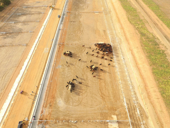 Feedlot Expansion nearly completed