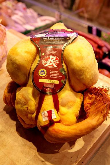 Chapon fermier jaune des Landes Label ro