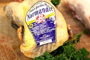 Pintade_fermièrede_Normandie1.jpg