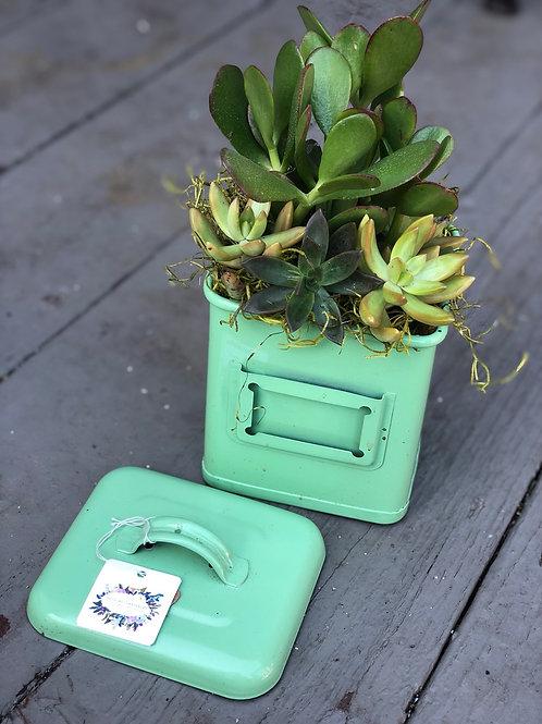 medium vintage succulent planter