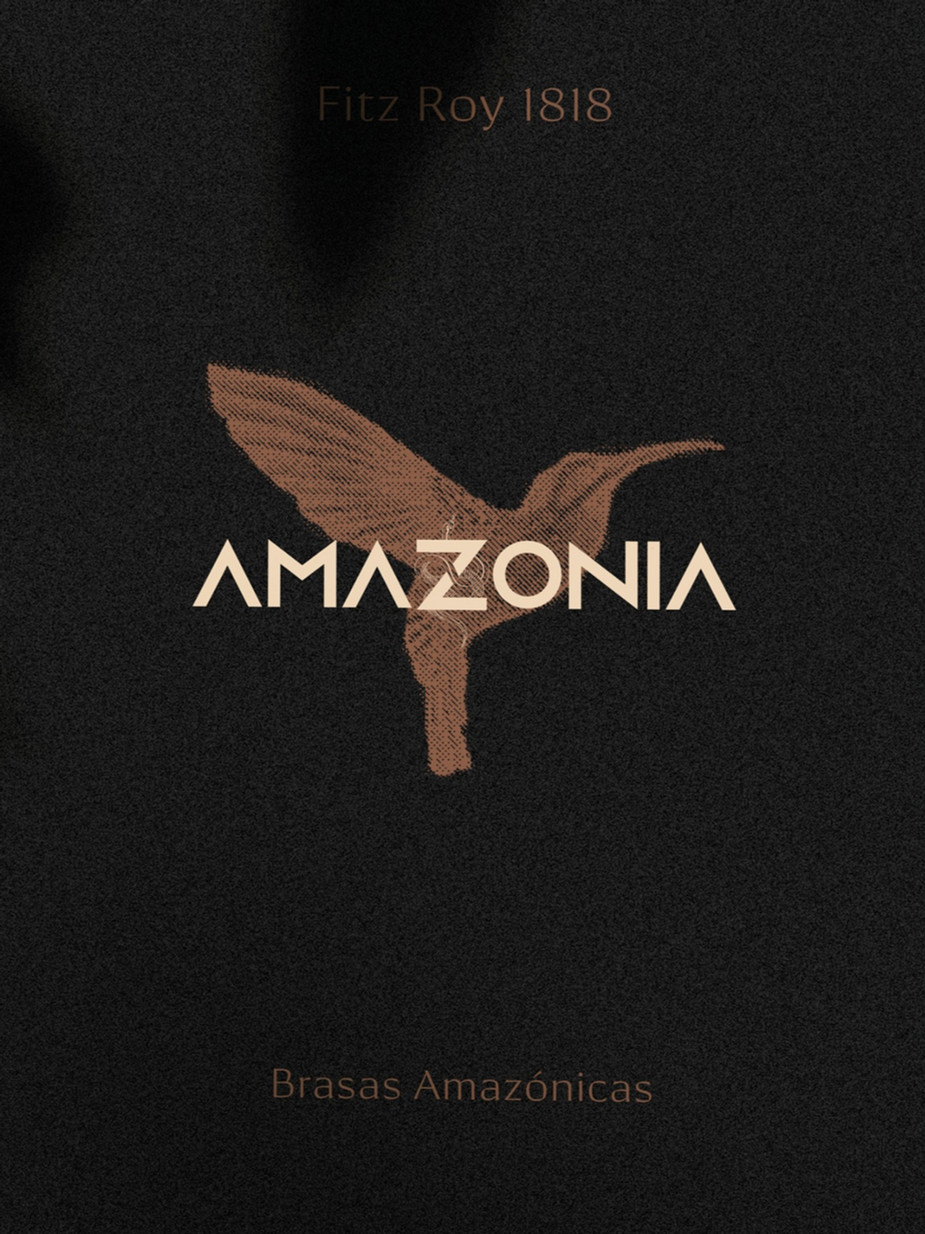 Amazonia Brasas