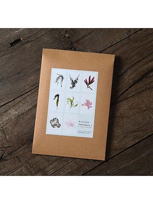8  Seaweed Cards Set 2