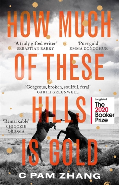 How Much Of These Hills Is Gold by C. Pam Zhang
