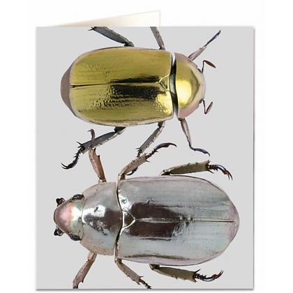 Metallic Beetles