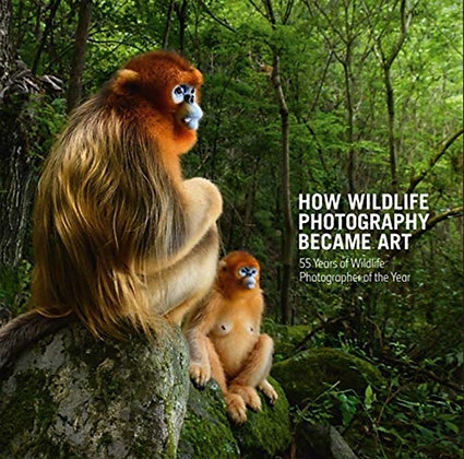 How Wildlife Photography Became Art : 55 Years of Wildlife Photographer of the Y