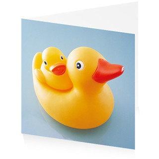 New Baby Duck