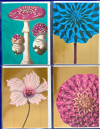 Shrooms & Blooms Pack of 4 Cards
