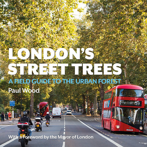 Sun Sept 24: Urban Forest Tree Walk with Paul Wood. 10:30am
