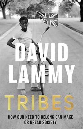 Tribes : A Search for Belonging in a Divided Society by David Lammy
