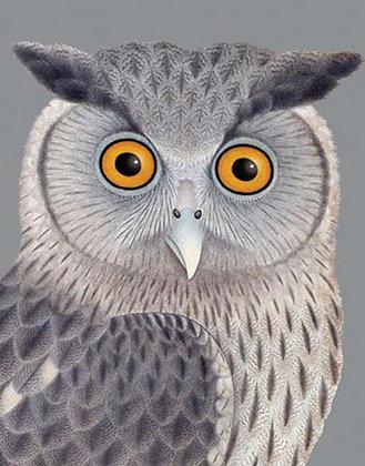 Eagle Owl on Silver