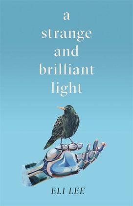 A Strange and Brilliant Light by Eli Lee