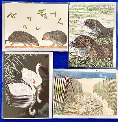 Natural World Pack of 4 Cards