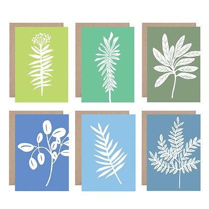 Kiran Ravillious Set of Cards Spring Plants