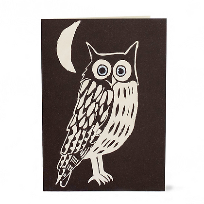 Nighttime Owl
