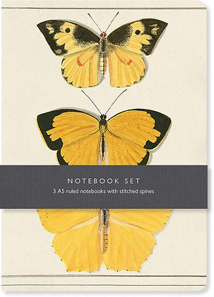 Butterfly Notebook Set : 3 A5 lined notebooks with stitched spines
