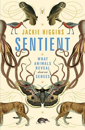 Sentient by Jackie Higgins