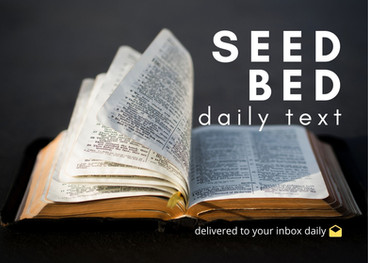 Sign Up for Seedbed Daily Texts