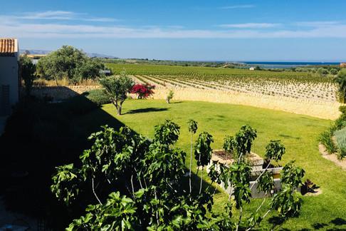 lato est, i pantani di Vendicari -east side, the marshes of Vendicari