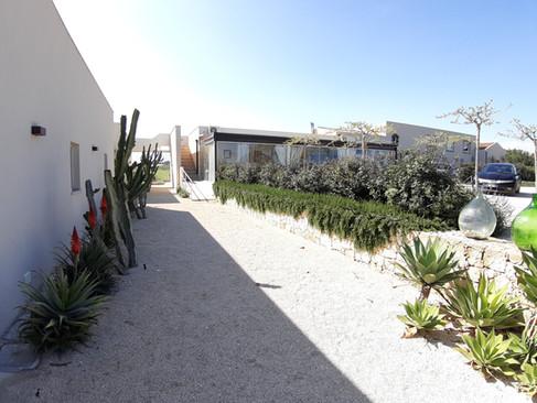 cactus e rosmarino - cactus and rosemary