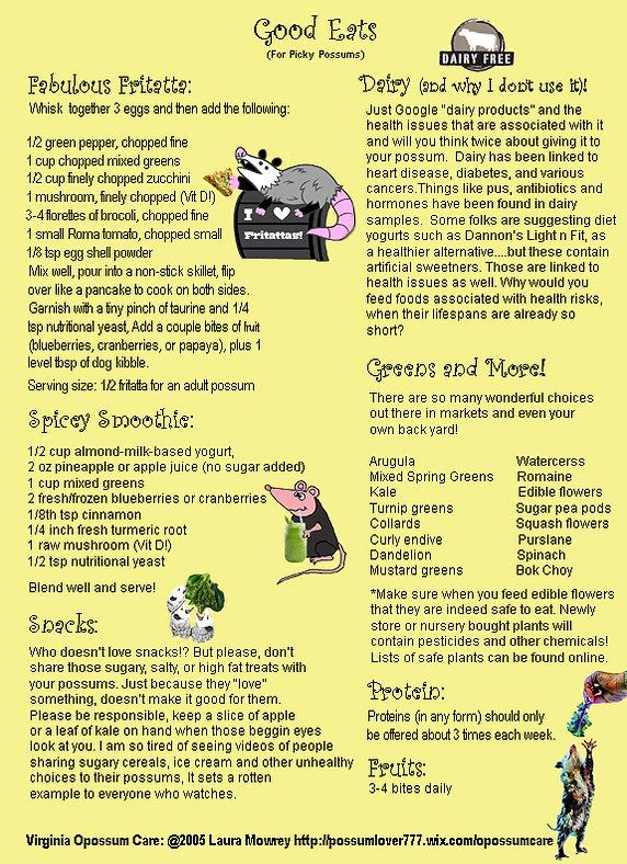 Adult Diet - Supplements | opossumcare