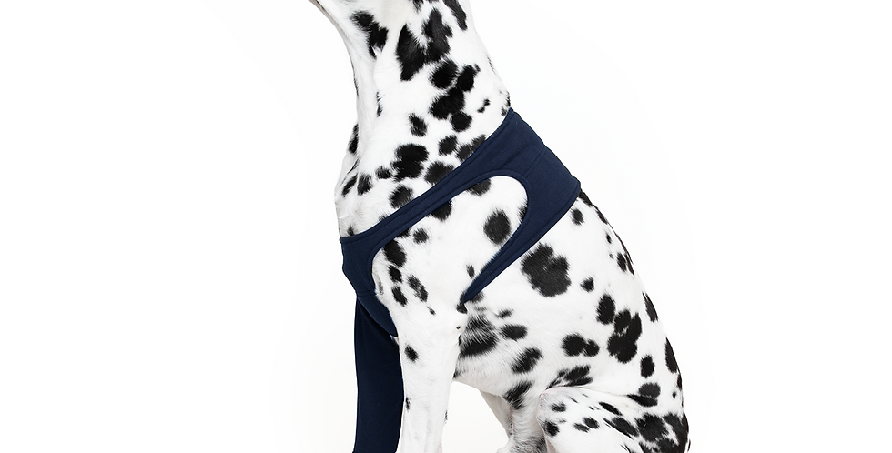 MPS-TAZ® SINGLE FRONT LEG SLEEVE DOG