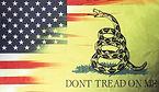 Gadsen_US Flag.jpg