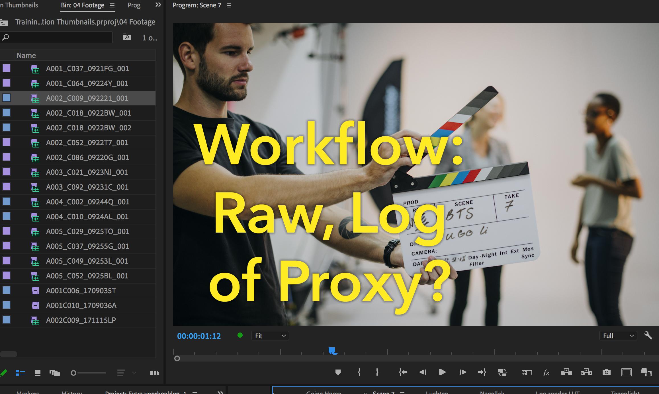 Premiere workflow: Raw, Log of Proxy?