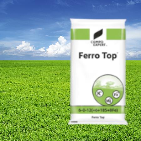 ferrotopA.png