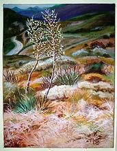 Landscape 2002.jpg