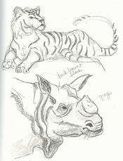 Tiger_Rhino.jpg