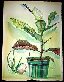 Plant 1992.jpg