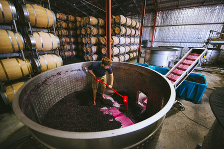 Local wineries