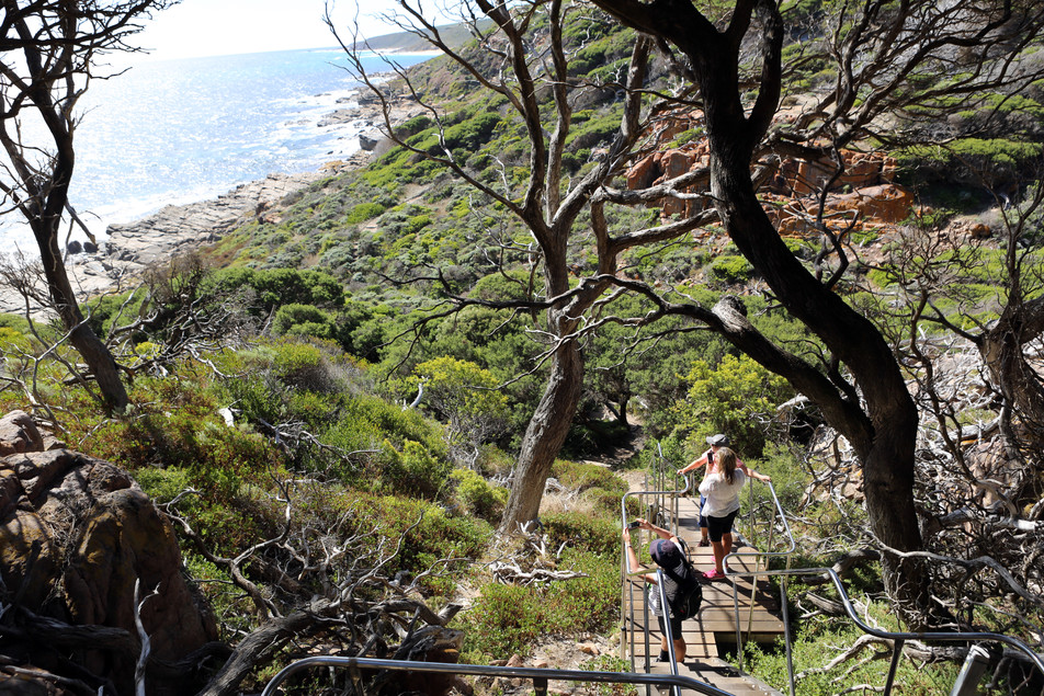 Cape to Cape Coastal Walks