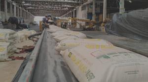 Paraná realiza exportação inédita de fuba de milho