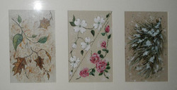 Natures' Four Seasons