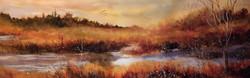 Highland Wetlands #2