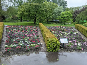 border arboretum 2021 2.jpg