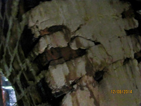 Creosote Dripping thru Side of Chimney