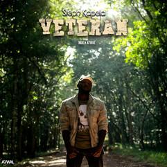 Veteran Art.jpg