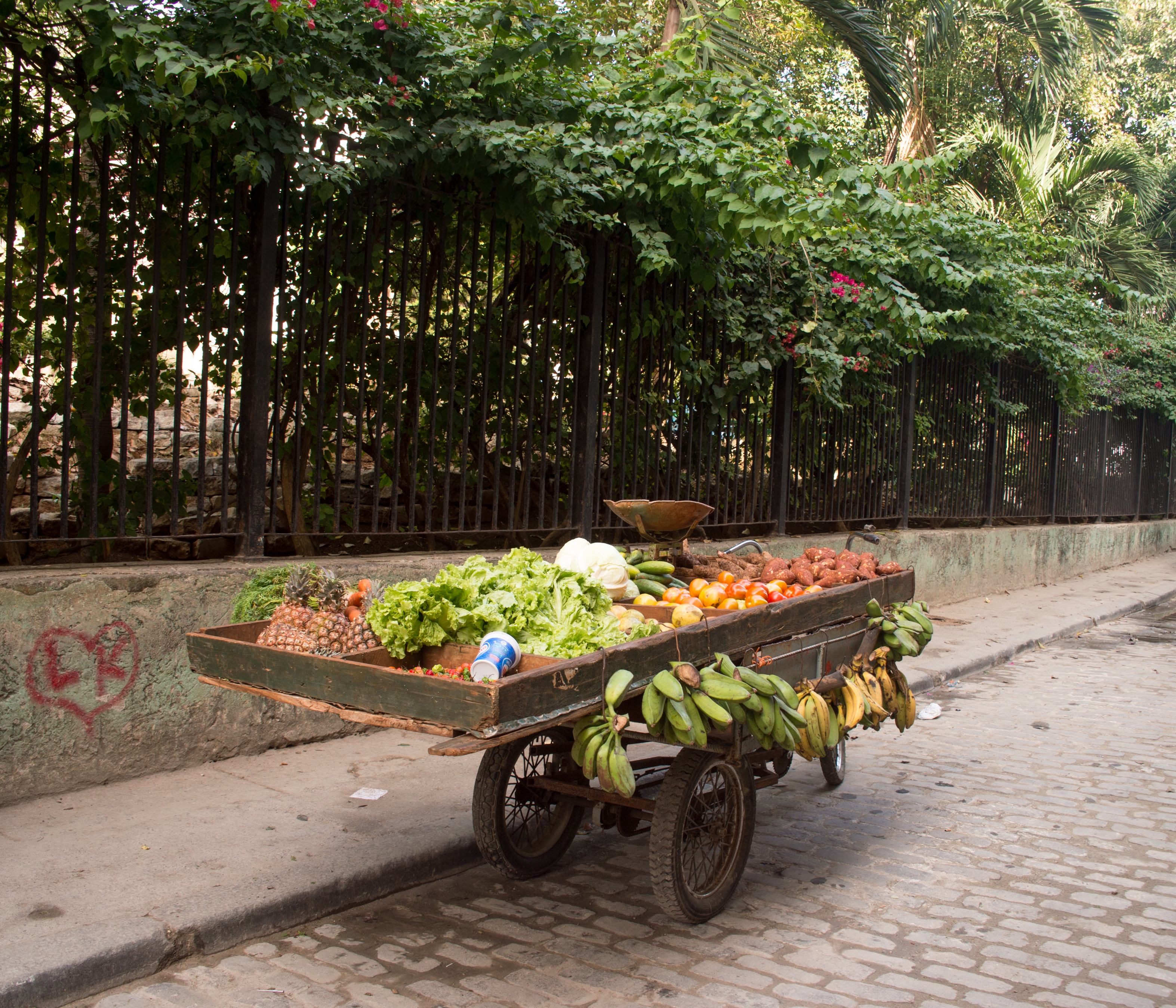 Habana Ambulante
