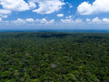 Brasil perto de cumprir meta de redução de CO2 em 2020.
