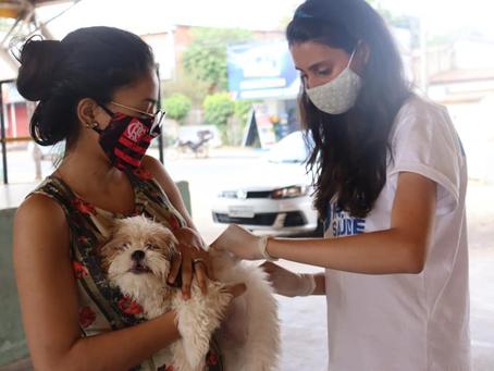 Primeira etapa  da Vacinação Antirrábica concluída