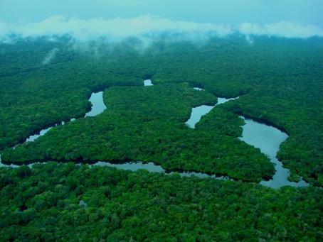 Ministério do Meio Ambiente: Congresso latino-americano debate áreas protegidas.