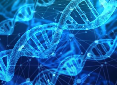 Já é possível reviver os seres híbridos mitológicos em laboratório com a nova genética sintética!