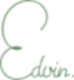 Logo_Edvin.png